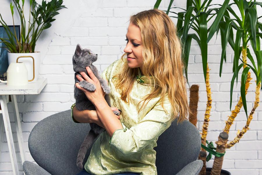 Русская голубая кошка: отзывы владельцев